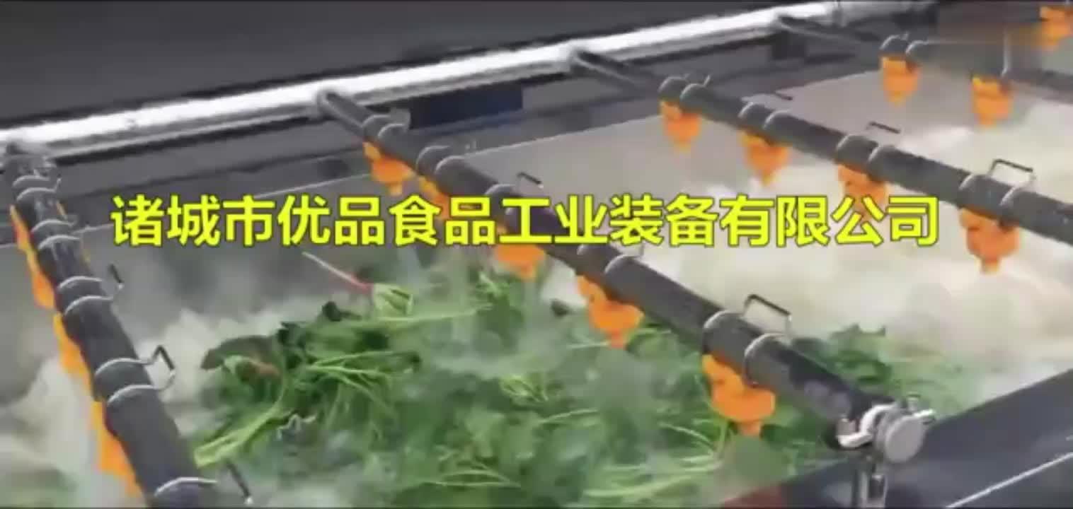 菠菜气泡清洗去杂机
